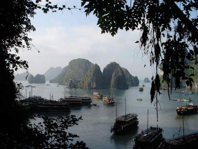 Вьетнам устройство таможенной службы